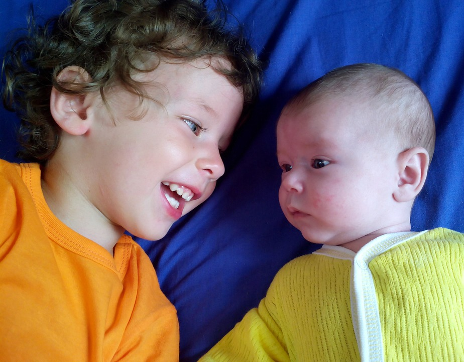 brothers-2864084_960_720