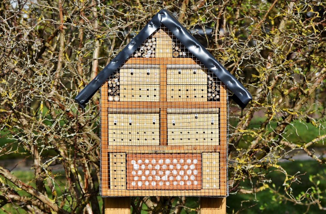 insect-hotel-3289687_1920